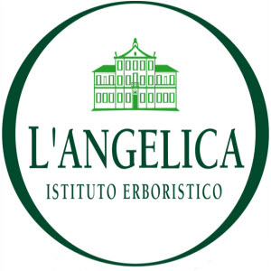 L'ANGELICA